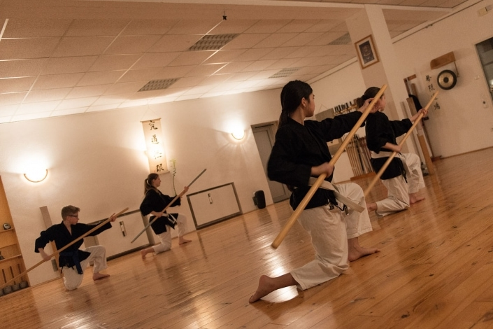 Kobudo, Kata Chou no kun, Mugen Dojo